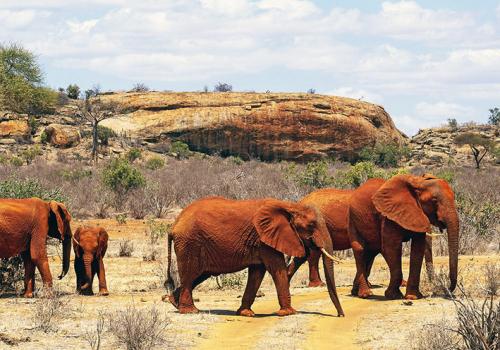 Kenya tájai: Teleki Expedíció emlékutazás (2. rész)