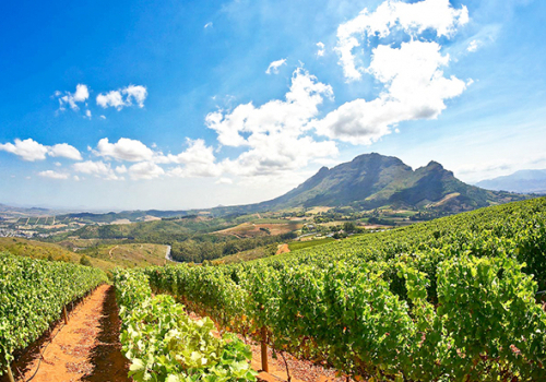 Lonely Planet Top 10: Cape Winelands, Dél-Afrika