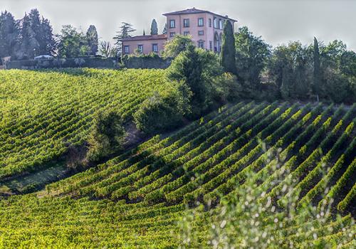 Karantén nélküli utazások: bor és szarvasgomba Toszkánában