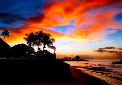 A Seychelle-szigetek ezeregy csodája