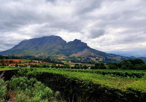 Afrikai utazások: Dél-Afrikai kalandok (2. rész)